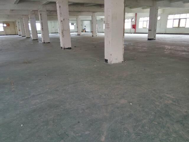 平湖华富民2路附近独门独院厂房分租