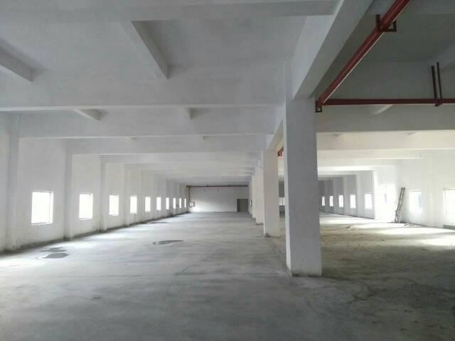 虎门镇南栅四区独院厂房3000平方招租,形象非常好,水电齐全