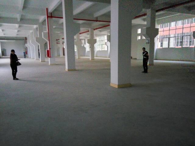 平湖靠近凤岗独门独院厂房分租