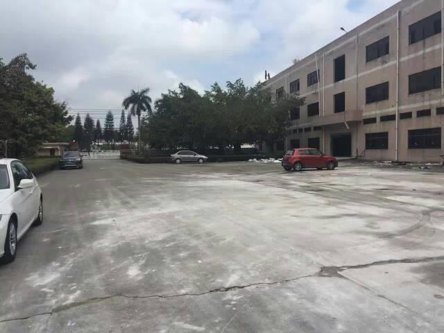 清溪新出原房东6米高标准厂房出租