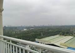茶山新做大厦,一楼大厅,2楼餐厅,3-10楼,900平方出租