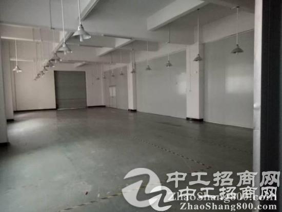 松岗带装修1300平出租 广东省 深圳市 宝安区