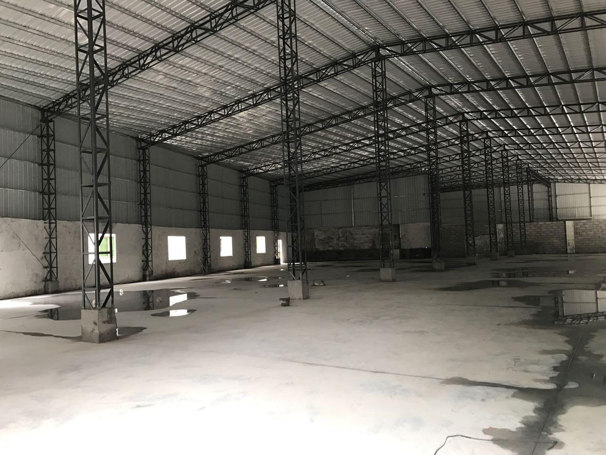 大朗水平钢构厂房出租800平方