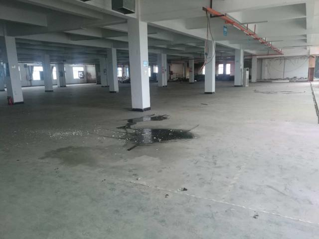 企石镇新岀标准厂房分租一楼车间900平方可以做临时仓库