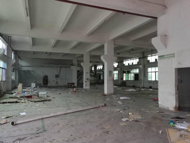 沙井新出一楼整层2500平厂房出租