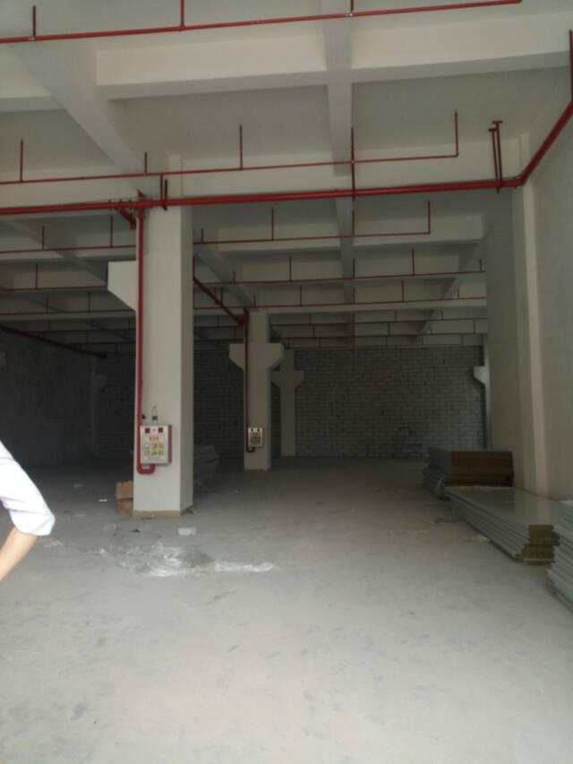 茶山新出标准厂房分租一楼带牛角1800