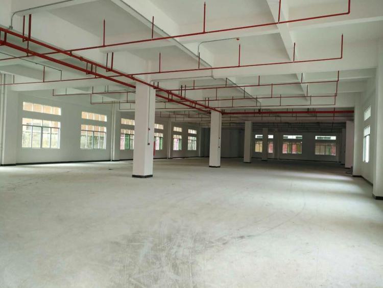 东城温塘新建的四层独院厂房10500平火爆招租