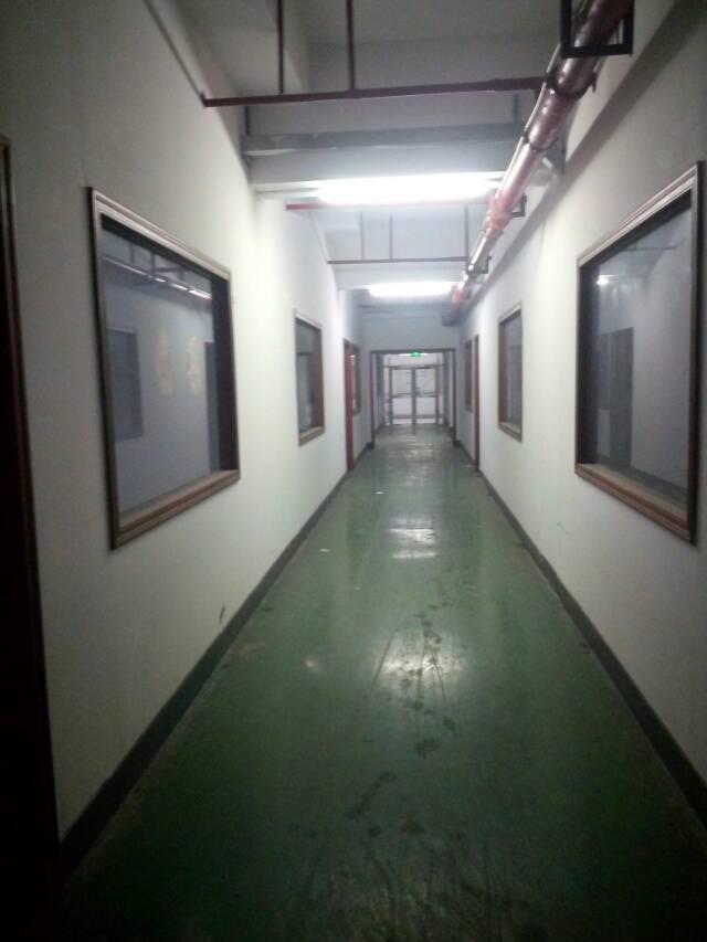 长安乌沙花园式厂房3楼出租,3200平