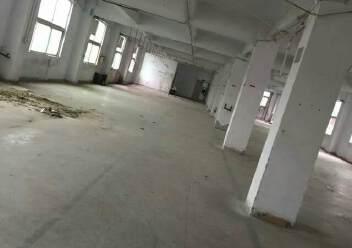 平湖华南城附近1000平米仓库出租图片2