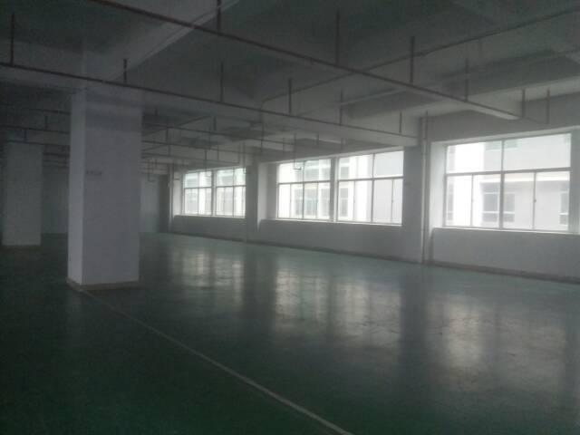 石岩 标准厂房楼上1800平 招租-图4