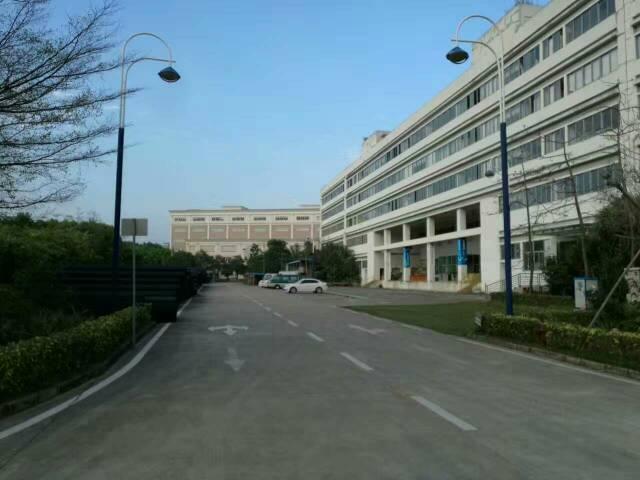大工业区1-4层23800平米红本独院厂房出租