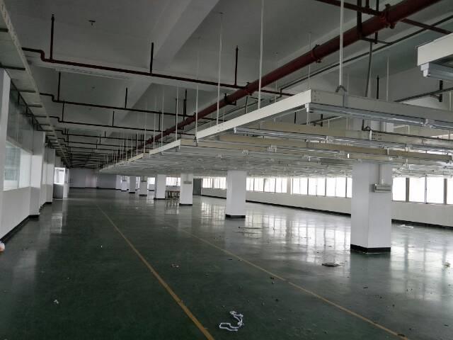 高埗镇北王路边二楼现成装修3000平出租-图4