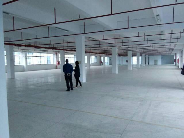 龙岗宝龙街道高薪技术园区新建独院60000标准厂房