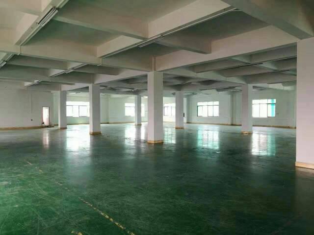 万江楼上带地坪漆厂房,1600平米