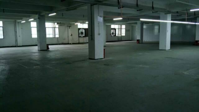 靠近深圳300平米厂房出租。