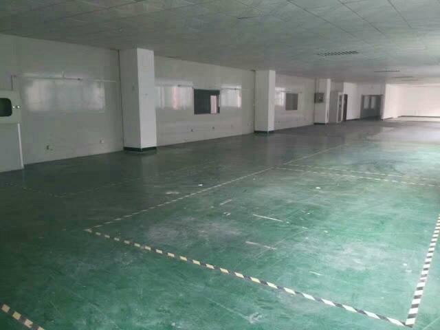 龙华新区原房东标准厂房招租