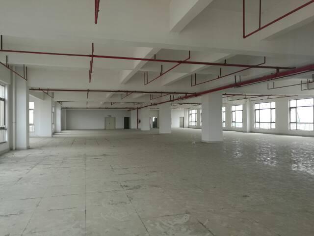新和工业园内带消防喷淋厂房出租,3000平米,有电梯