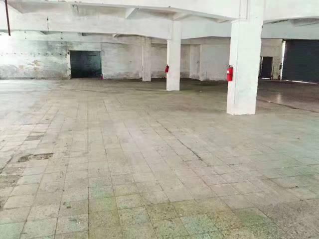 靓盘龙华地铁口800米两层小独院火爆招租-图4