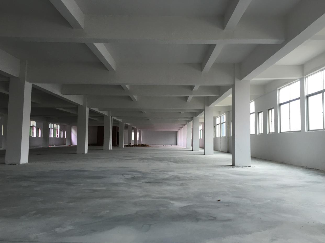 独院新建厂房招租,3吨电梯厂房,可分租