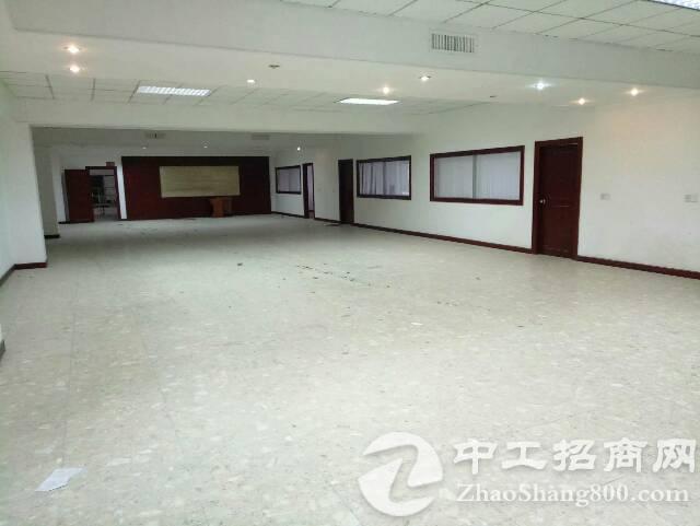 大浪商业中心附近原房东红本厂房2000平米,实用