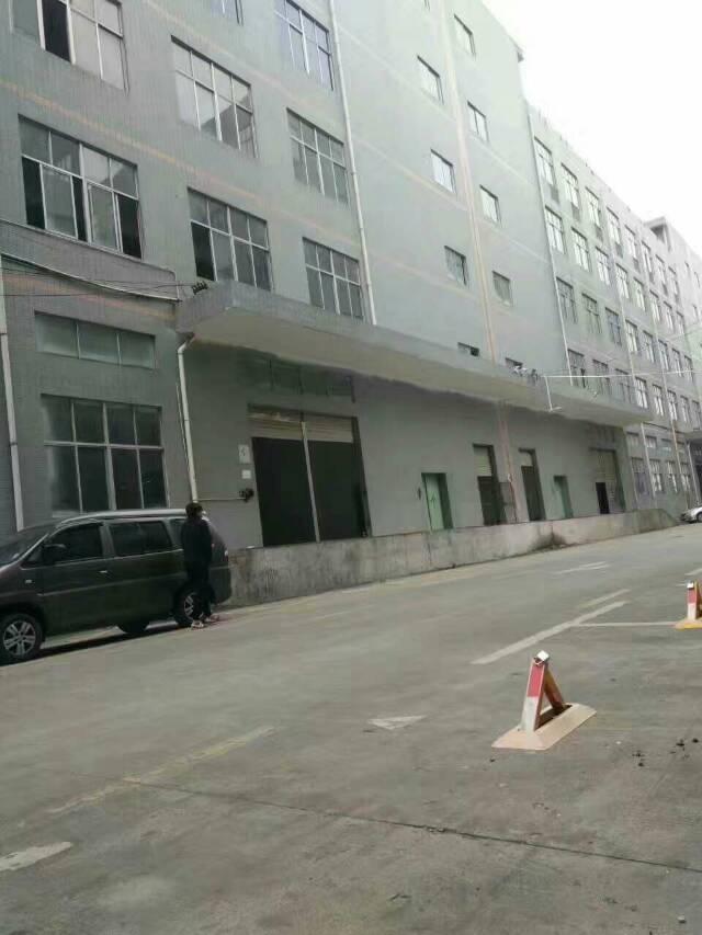 龙岗区横岗街道四联社区排榜村一楼带装修620平米亿万先生