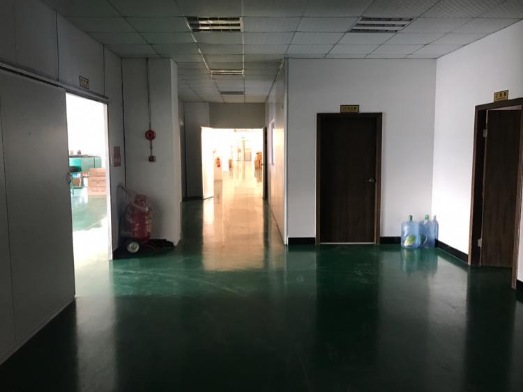 大朗新出经典独院厂房,带有现成装修办公室