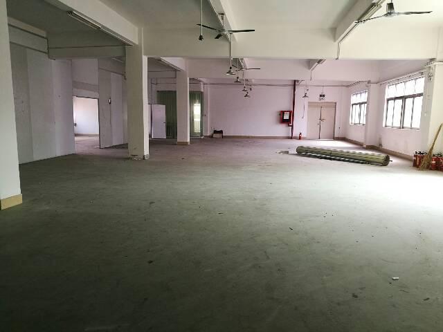 石岩北环路边新出带精装修厂房1100平方招租