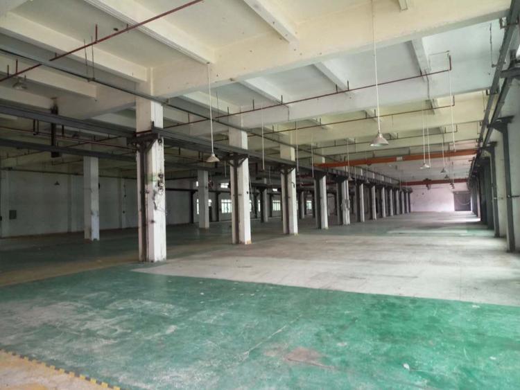 常平镇标准厂房独院9500平方出租