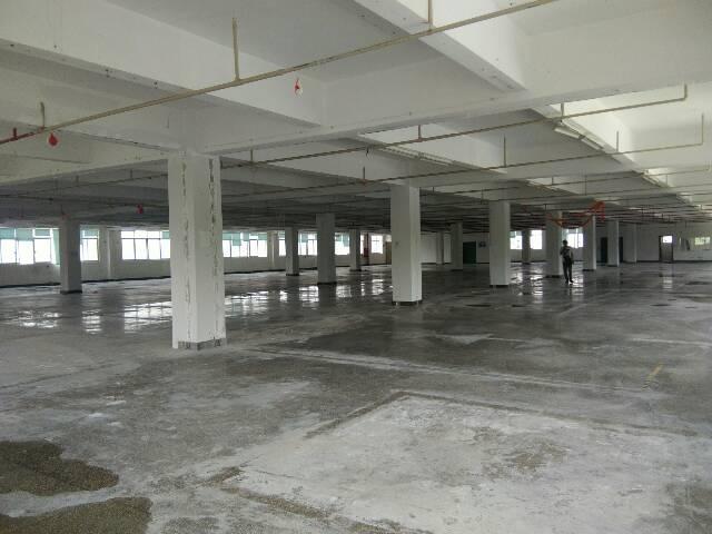西丽一楼3500平米仓库出租