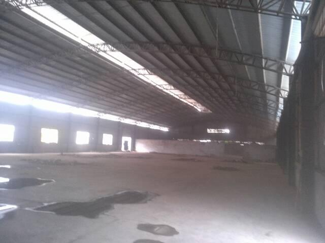 观澜独院钢构3000平米出租