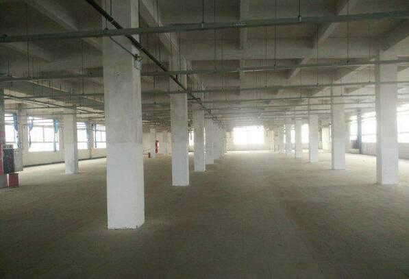 (出租)大浪清湖附近有1900平方二楼厂房出租,可分租-图2