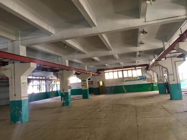 横沥新出物业分租1楼2500平方租14