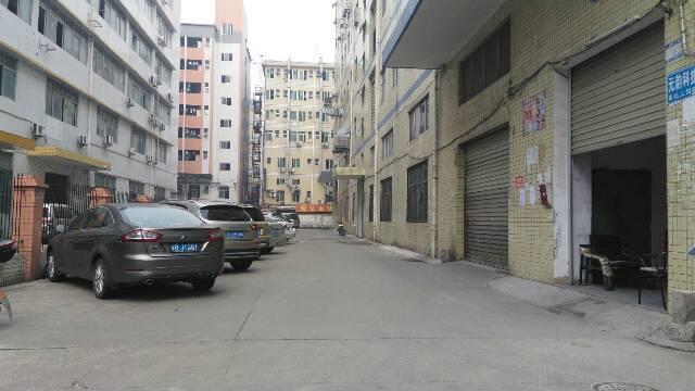 西乡九围楼上带精装修厂房890平米出租