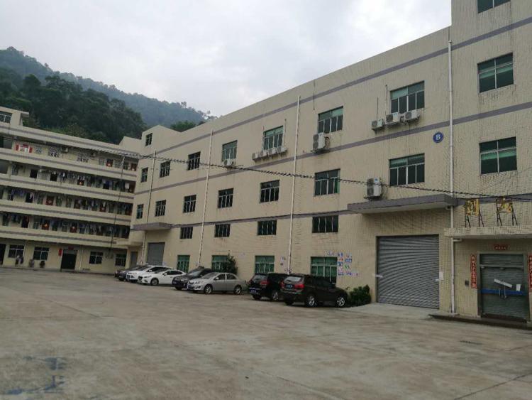 清溪新空一楼标准厂房1600平方出租