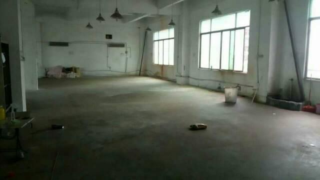 出租公明塘尾带装修一楼一千平米