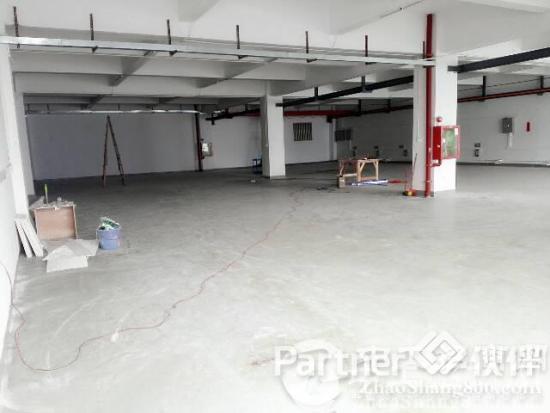 松岗107国道边楼上1100带装修招租 广东省 深圳市 宝安区