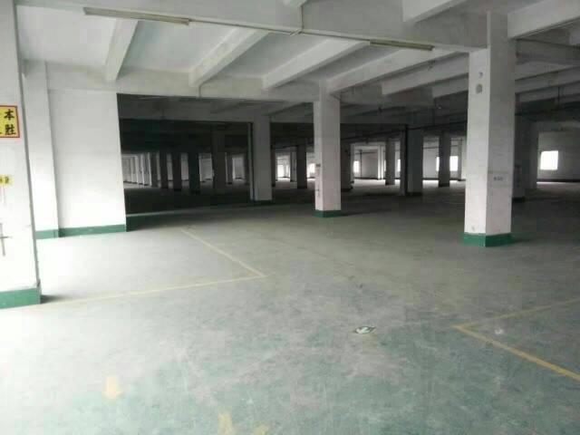 大岭山太空岭新出独门独院厂房4500平米,宿舍1600平米