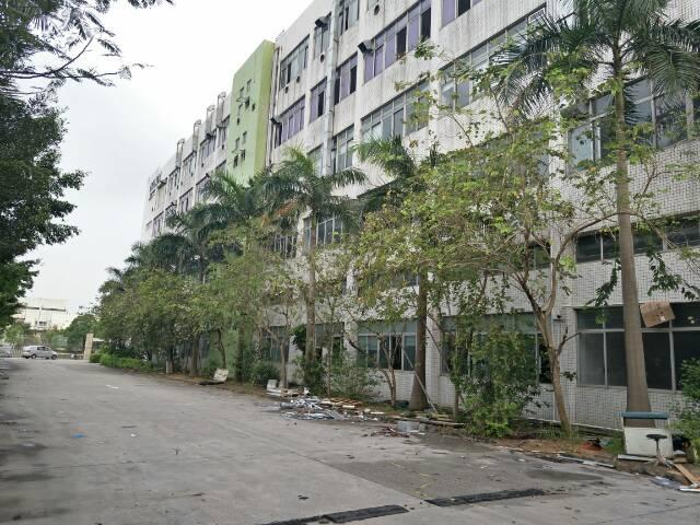 坪山新区园林式工业厂房层高6米5厂房整栋出租