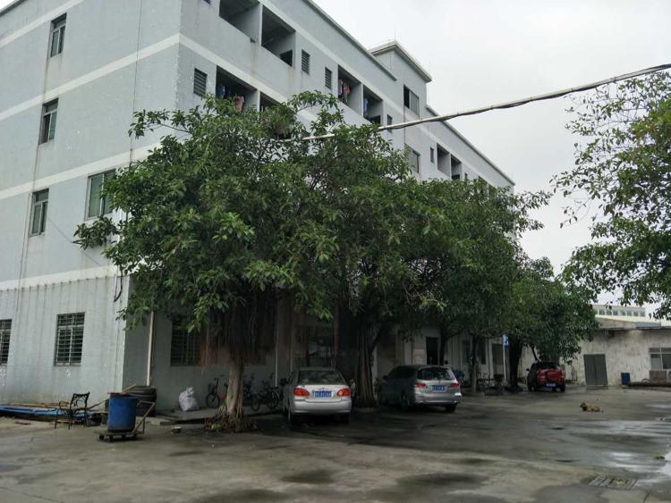 万江跟道滘交界处新出单一层砖墙厂房3000平米,宿舍+办公1000平
