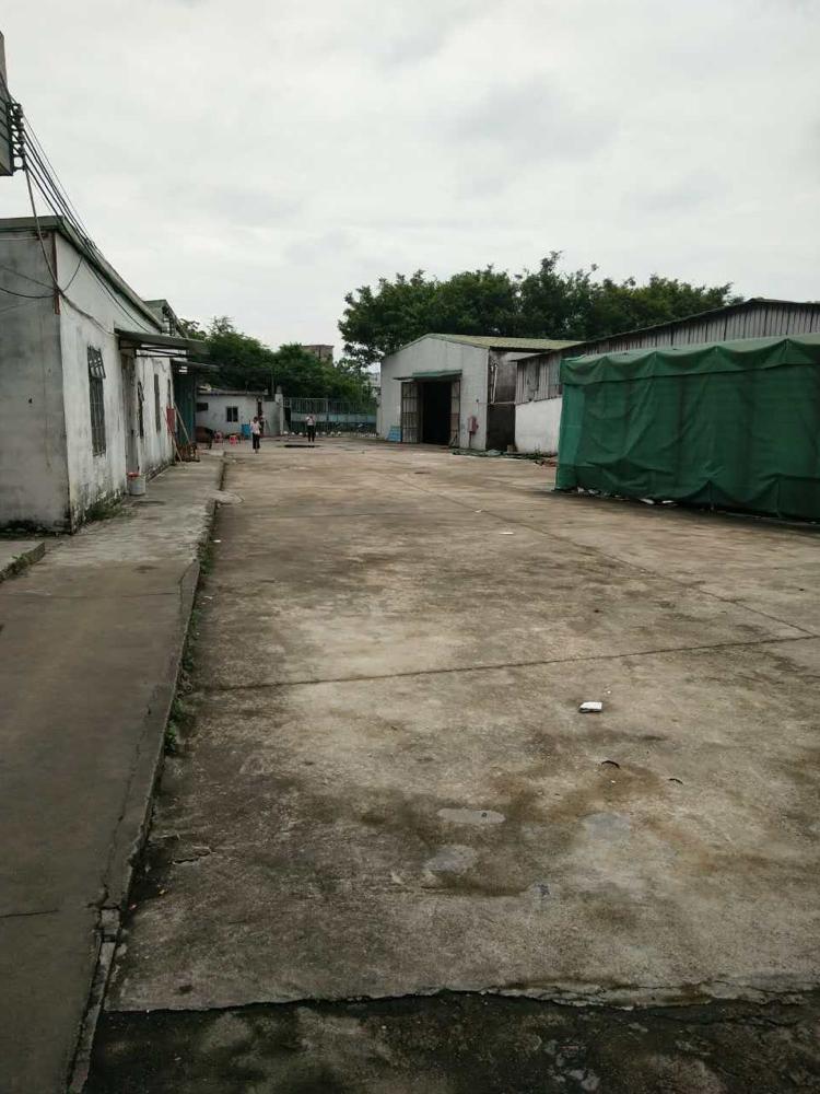 大岭山梅林村.独门独院厂房出租6500平方.可分图片