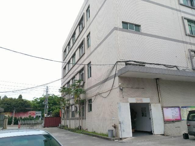 虎门大宁标准一楼厂房出租面积1000平租10元电315kva