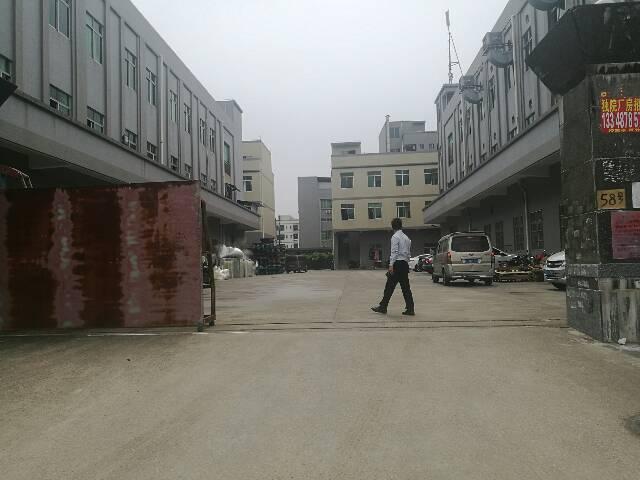 大朗新岀独院厂房