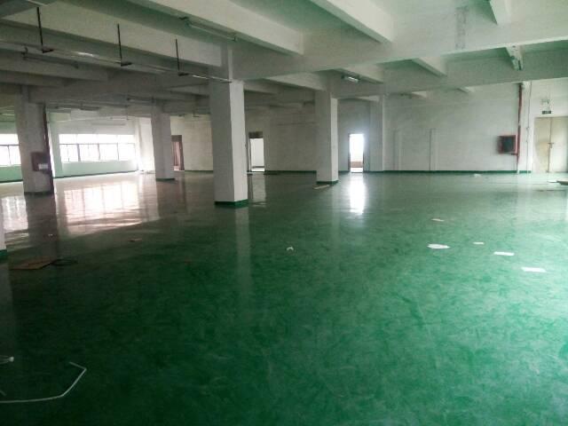 公明镇松柏路边上新出厂房3楼900平方带精装修招租