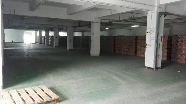 清溪镇新出标准厂房2楼3200平方带装修办公室交通便利