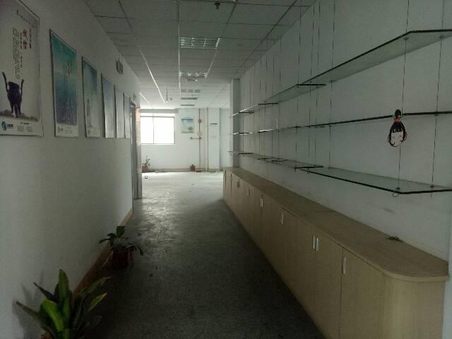 大朗新出独门独院厂房-图2