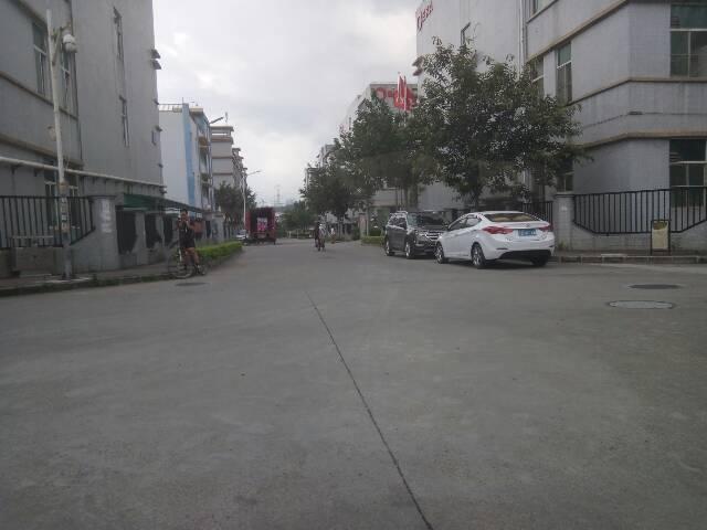 深圳龙岗区318平米一楼仓库出租20元一平米
