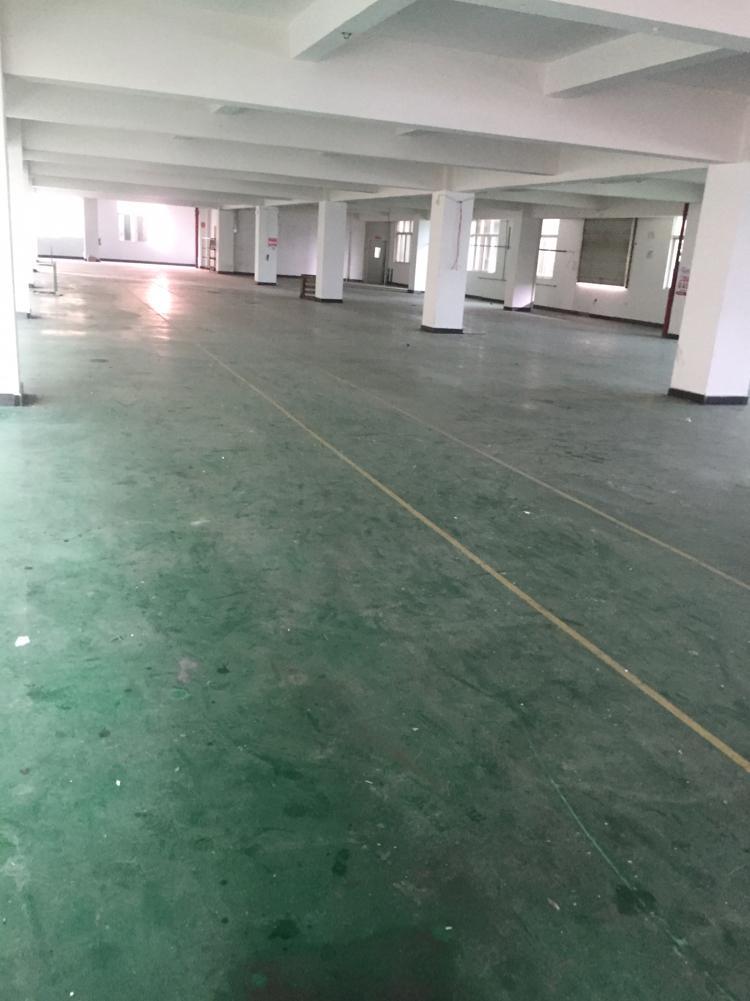 东莞横沥标准独门独院原房东厂房3500平方