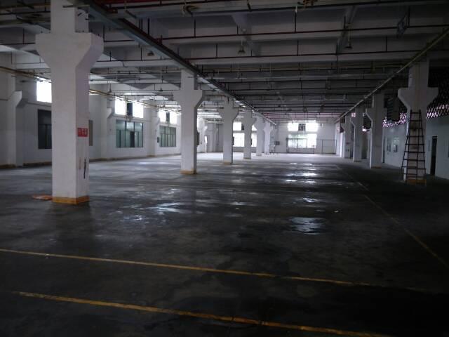 独院标准厂房一,二楼出租