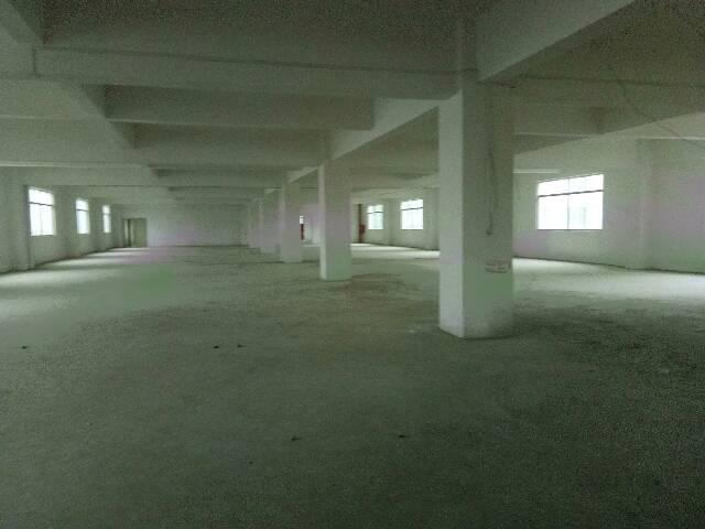 位于坪地坪西,全新独院厂房招租可分租,招租2-3层3700