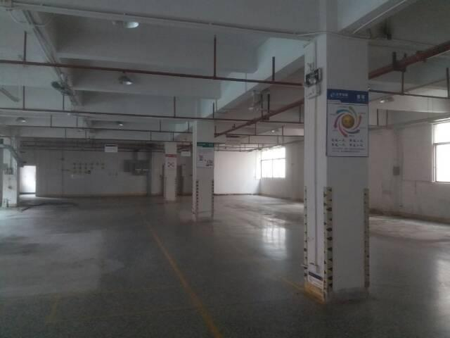 独院标准厂房出租水电线路齐全带无尘室